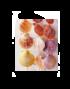 conchas-colgantes2